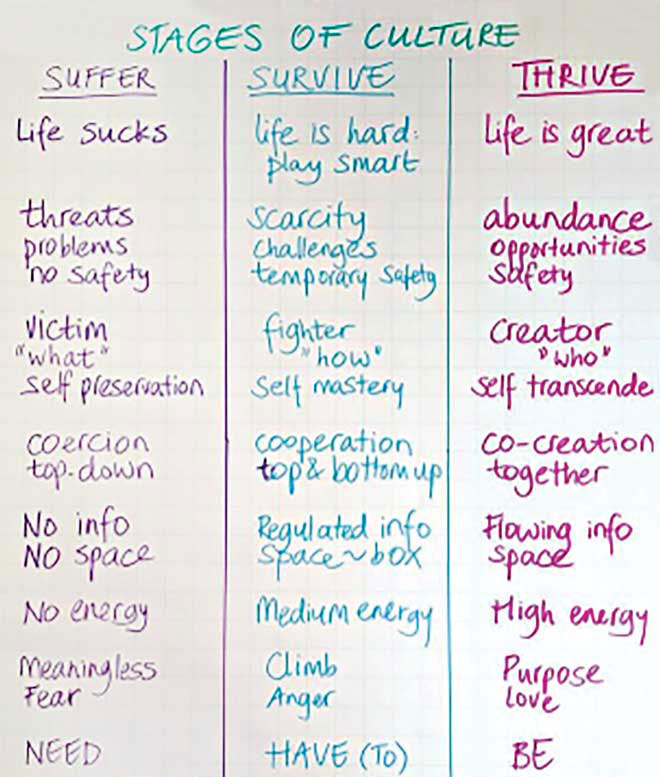 "Consider multiple levels of goals for yourself and the clinic, with ""thriving"" always being the optimum target. ©Marcella Bremer, Leadership and Change"
