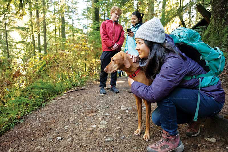 Families explored dog parks and hiking trails with their new canine companions, but they brought home more than memories. A prevalence study of 3,006 dogs visiting dog parks in 30 metropolitan areas found one in five had intestinal parasites.