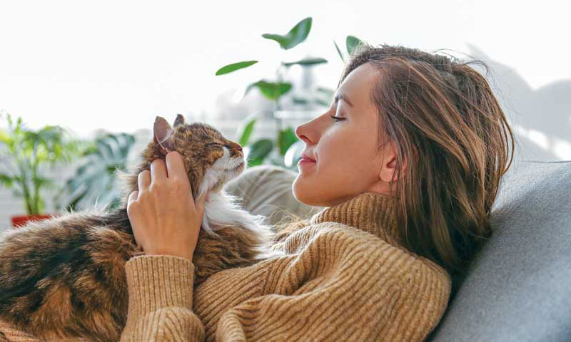 COVID anxiety spares no one. Can pets get sick and die from it? Can they give it to their people? Can we infect them? Surrounded by all of this angst, can we practicing veterinarians survive the tension? PHOTO COURTESY UNDEFINED UNDEFINED / ISTOCK / GETTY IMAGES PLUS