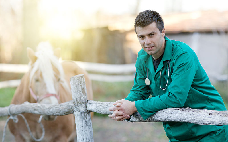 A bill aimed at minimizing student debt and improving access to veterinary care in America's rural areas has been reintroduced in the U.S. House of Representatives. Photo ©BigStockPhoto.com