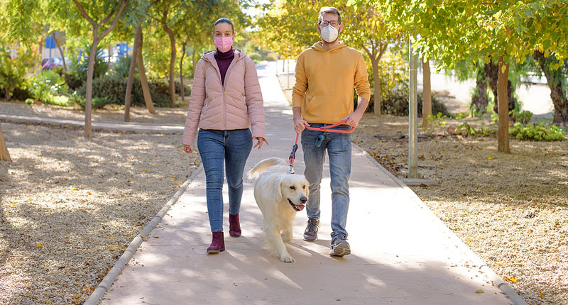 "Veterinarians, technicians, and animal lovers are invited to ""walk their tails off"" in support of the Bissell Pet Foundation (BPF) virtual Walktail. Photo ©BigStockPhoto.com"