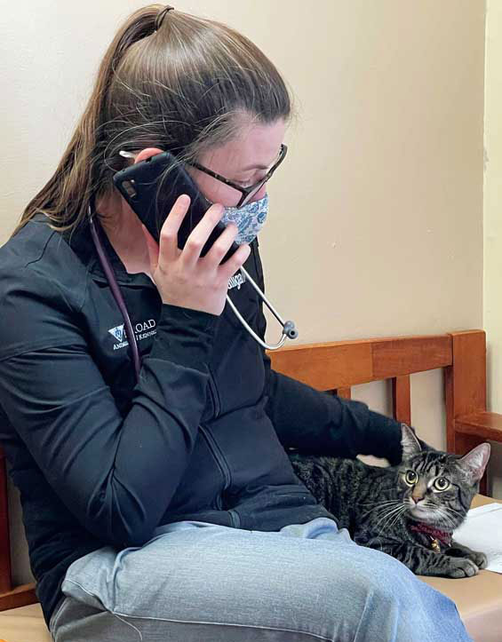 Pet owners are used to being in the exam rooms with their animals. Now that they're not able to accompany their animals inside the clinic, communicating with them quickly and thoroughly helps alleviate some of their concerns.