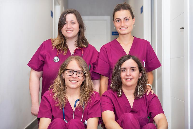 Veterinary hospital network CareVet has launched a revenue share bonus program. Photo ©BigStockPhoto.com