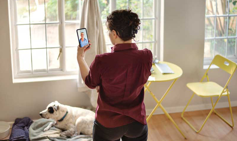 In some cases, owners are able to show doctors what is ailing their pets with the help of technology. Photo courtesy nickylloyd /e+ / getty images