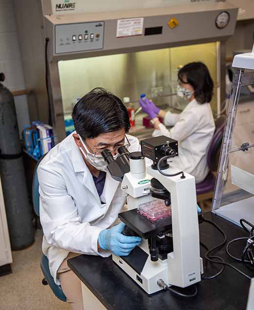 """K-State researchers Kyeong-Ok """"KC"""" Chang (left) and Yunjeong Kim have published a new study about a successful postinfection for SARS-CoV-2, the virus that causes COVID-19. Photo courtesy K-State"""