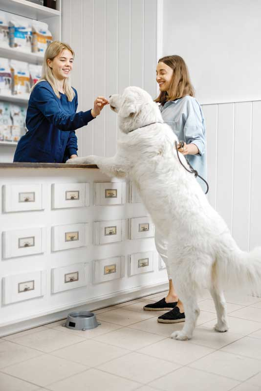 A staff is important to a clinic's long-term success. An adequate wage can help retain talented and loyal employees. Photo ©BigStockPhoto.com