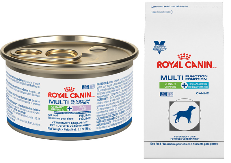 Royal Canin Releases Multiple Condition Pet Food